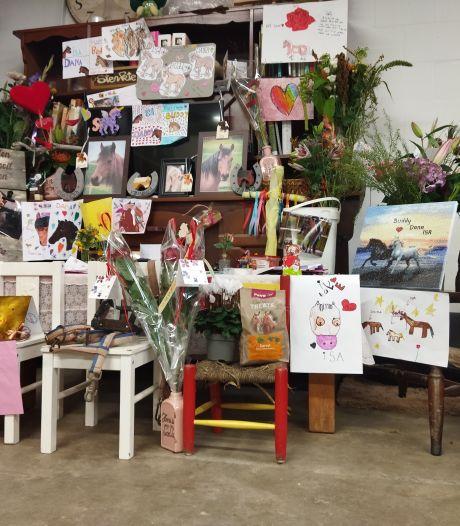 Manege na dramatische dood pony's: 'Zoveel steun, daar staan we echt van te kijken'