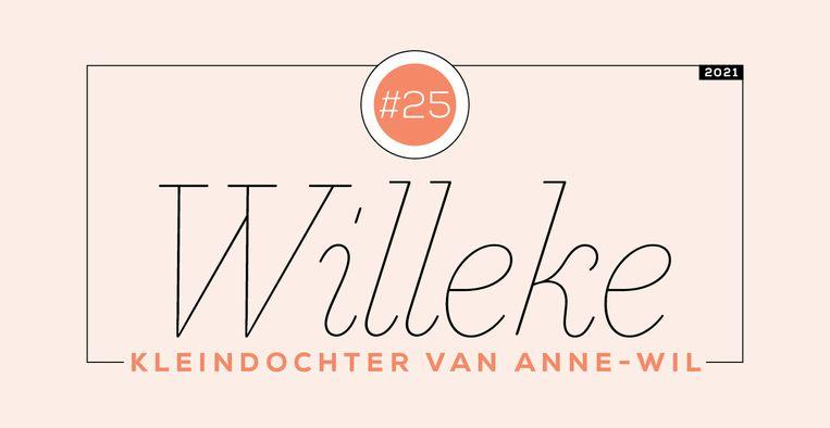 Dagboek van Willeke #25 Beeld