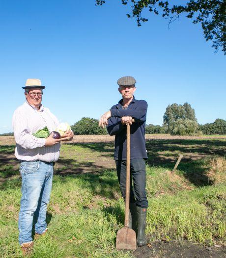 Iedere aandeelhouder mag groentes komen oogsten in collectieve tuin bij boerderij Ydenhoeve in Collendoorn