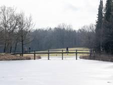 Lentezon ontdooit het Vechtdal: schaatsen zijn ingeruild voor fiets, camper of wandelschoenen