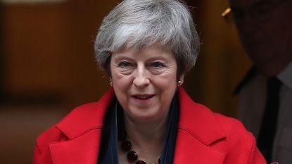 """""""Theresa May heeft strategie om brexitakkoord door parlement goedgekeurd te krijgen"""""""