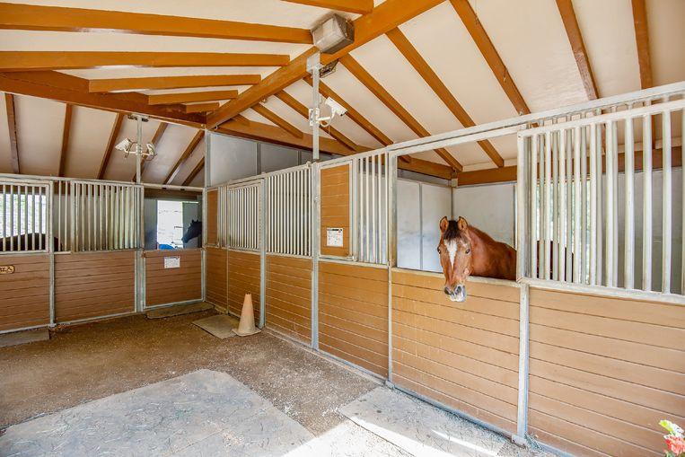 Een paardenstal is ook inbegrepen in de prijs.