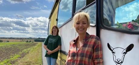Boerin Bertie chauffeur in nieuw programma Yvon Jaspers: 'Ik hou van alles dat groot en lomp is'