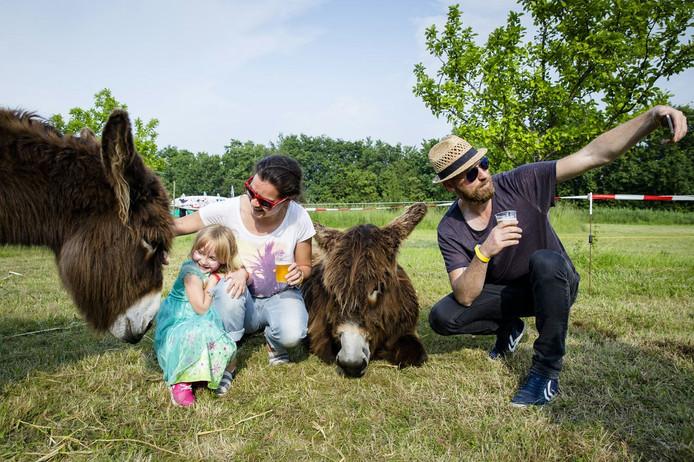 Gezellig met de ezeltjes van Het Ezelhuis op Het EEF Festival Noord-Beveland