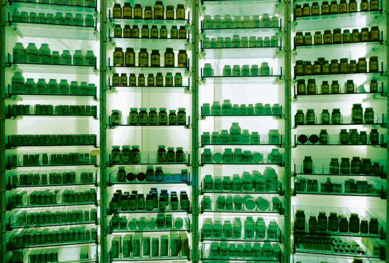 Kast met medicijnen in apotheek. Beeld Joost van den Broeke