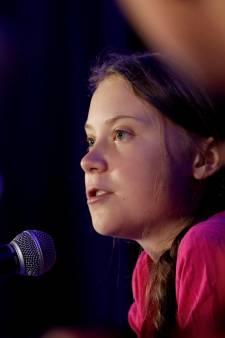 Greta waarschuwt voor gevolgen houtverbranding in Diemen