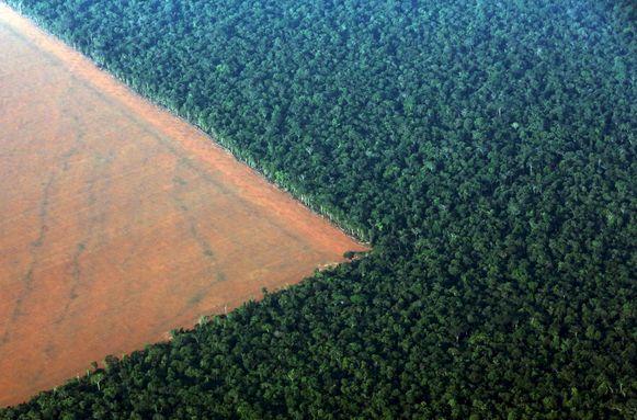 De ontbossing in het Amazonewoud.