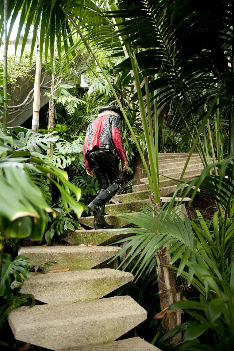 Tuin: De grotachtige trap is uitgehakt in de zandstenen heuvel. Alle vegetatie die je hier ziet, is aangelegd. Het tuinontwerp, zegt Goldstein, is een interpretatie van de natuur en de paadjes en trappen verdwijnen als het ware in het ecosysteem. Beeld Els Zweerink
