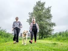 Bewoners Delfgauw vrezen woningbouwplannen Pijnacker-Nootdorp: 'Vechten om groen'
