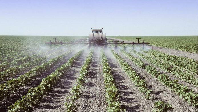 """""""La Commission a choisi le camp de l'industrie; pas celui de la santé alors que les effets nocifs des pesticides sont connus depuis les années '90"""", souligne Hans Muilerman de Pesticide Action Network."""