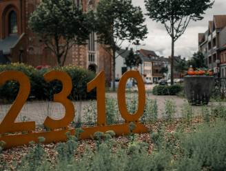 Volksfeest sluit Rijkevorselse feestdag 2310 af