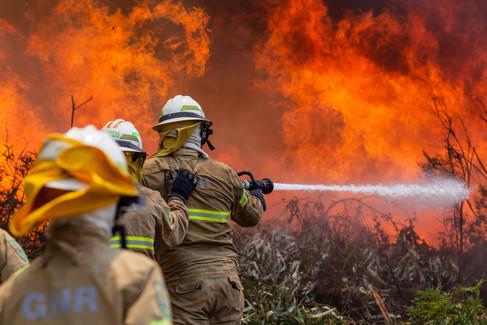Foto van Hevige bosbranden houden Portugal in bedwang