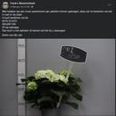 Een van de vele Facebook-berichten waar Frank Heijmerikx nu zijn bloemen probeert te verkopen.
