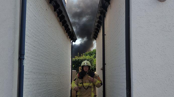 Aan de Lipperkerkstraat brandde maandagmiddag een coniferenhaag. Metershoge vlammen en de zwarte rook was in de wijde omgeving te zien.