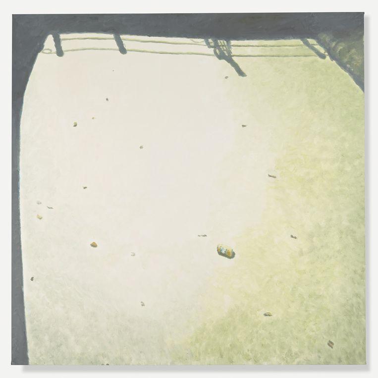 'Murky Water I'. Beeld Luc Tuymans