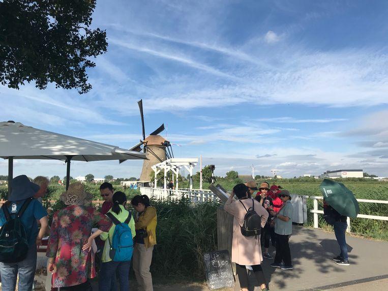 Toeristen bij de molens van Kinderdijk. Beeld Caspar Janssen