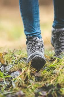 Dit zijn de vier mooiste wandelroutes van de regio: 'Het geeft je energie'