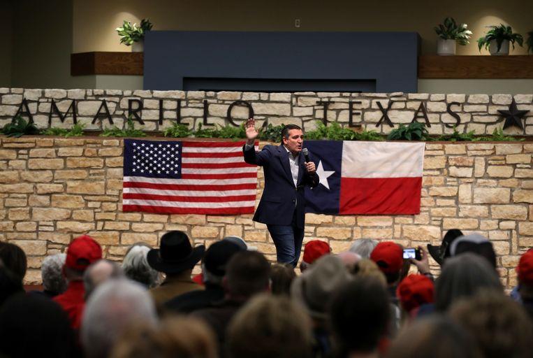De Republikein Ted Cruz op campagne. Beeld AFP