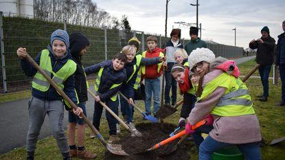 Kinderen planten bij-vriendelijke laanbomen