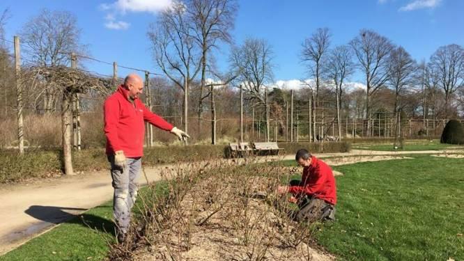Vrijbroekpark leert rozen snoeien