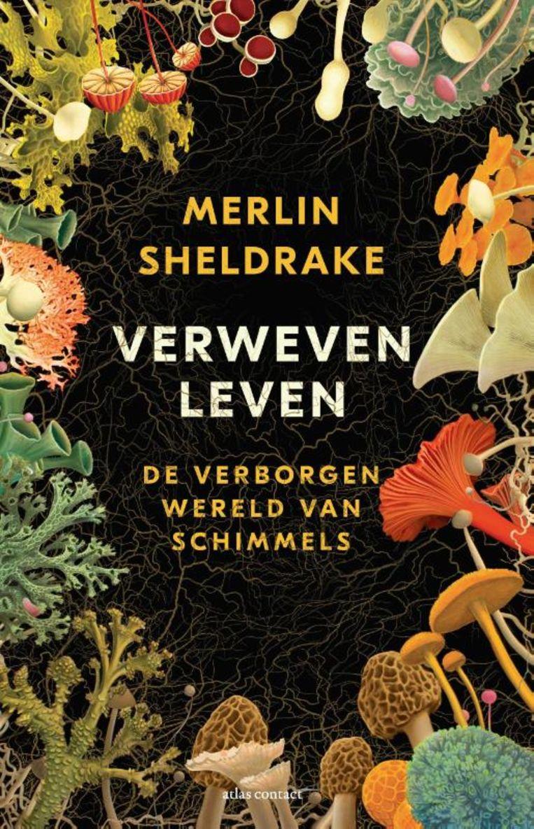 Merlin Sheldrake, 'Verweven leven. De verborgen wereld van schimmels', Atlas Contact, 368 p., 26,99 euro. Vertaling Nico Groen. Beeld rv