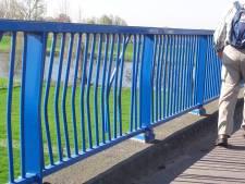 Kinderen op de Niftrikse brug kunnen maar beter oppassen
