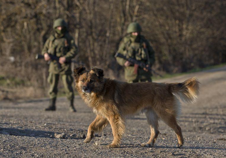 Russische militairen bij een Oekraïense basis in Perevalne. Beeld ap
