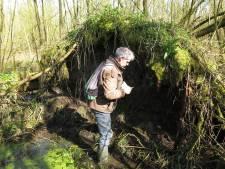 In de Biesbosch op zoek naar de stompe haarmuts, boommuggenstrontjesmos, dwergwratjesmos en ruig boomvorkje