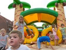 Duikers op Kinderboulevard in Schijndel