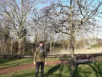 """Op zoek naar de mooiste boom van Bredene: """"Niet iedereen is zich bewust van hun grote belang"""""""