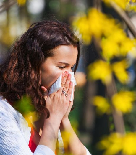 La saison des pollens a commencé