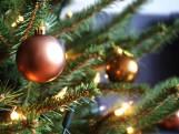 8 december: Kerstmarkt in Vogelwaarde