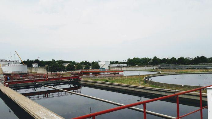 De rioolwaterzuivering bij Ritthem.