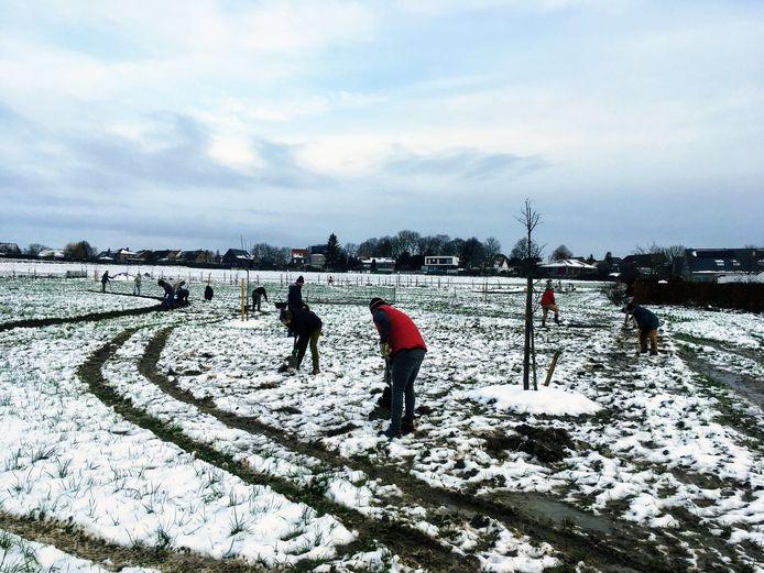 Er lag zondag nog wat sneeuw in het landelijke Sint-Denijs, maar dat hield de vrijwilligers niet tegen.