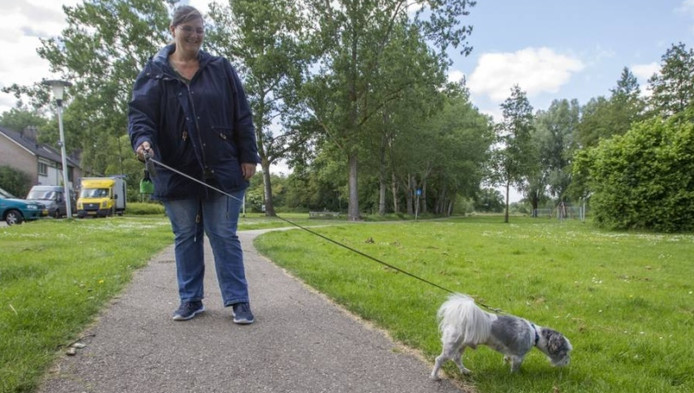 De Helmondse Bianca Lijten weet niet beter dan dat haar hondje Mickey hier mag poepen.