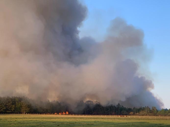 De brand in het Gildehauser Venn