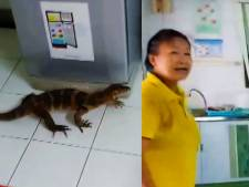 Un varan met la pagaille dans un hôpital