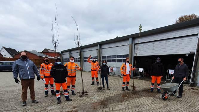 475 inwoners halen gratis boom op