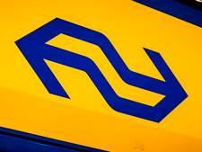 Defect spoor zorgt voor minder treinen tussen Rotterdam en Gouda