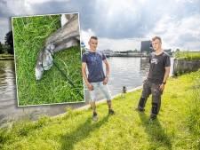 Woede over verdronken hond in Zwolle: 'Ik snap niet hoe zoiets in je hoofd kan opkomen'