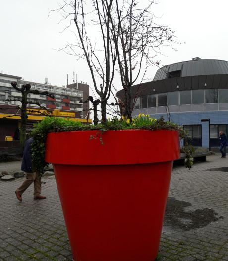 Centrum van Hardenberg krijgt facelift dankzij drie Stadscheques