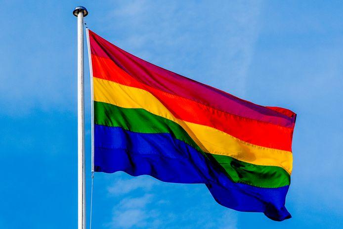 een regenboog vlag regenboogvlag  homo , homo;s