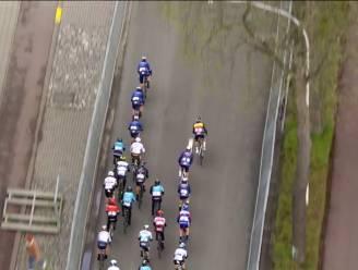 """Dries Van Gestel na tiende plaats in Scheldeprijs: """"Zonder kwak van Cav' zat top vijf erin"""""""
