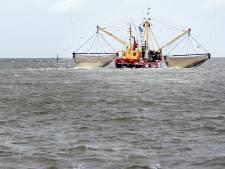 Vis kan eindelijk door Haringvlietdam, maar daarachter wachten netten en fuiken