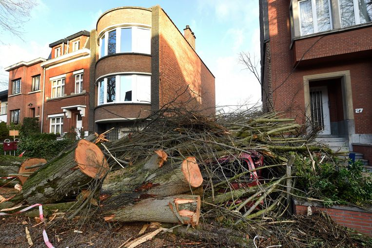 Archiefbeeld. Een dag na storm Ciara, Brussel.