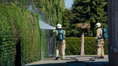 Haag vat vuur bij branden onkruid