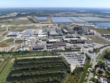 Zonnepark Budel moet grootste van Nederland worden: zinkfabriek Nyrstar wil naar oppervlakte van 270 voetbalvelden