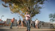 Groen waarschuwt voor afsterven linde op verlaagde Leieboorden en wil snel bomenplan