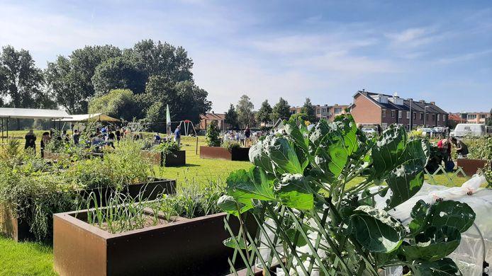 Moestuin De Terp op de Staart in Dordrecht en de nieuwe speeltuin die ernaast is aangelegd, werden woensdagmiddag heropend nadat de vervuilde bodem is gesaneerd.