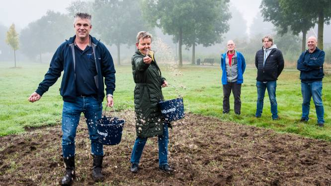 Eibergse Marja Oskam 'regelt' meer bloemen in wandelpark: 'De Maat kon wel wat minder saai'